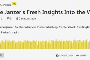 Published and Profitable Interview
