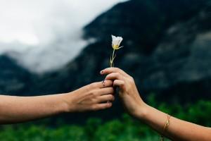 The Magic Moment for Value Nurturing