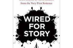Wired for Story: A Book Review