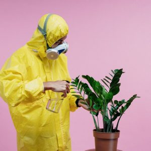 person using hazmat suit to water house plant