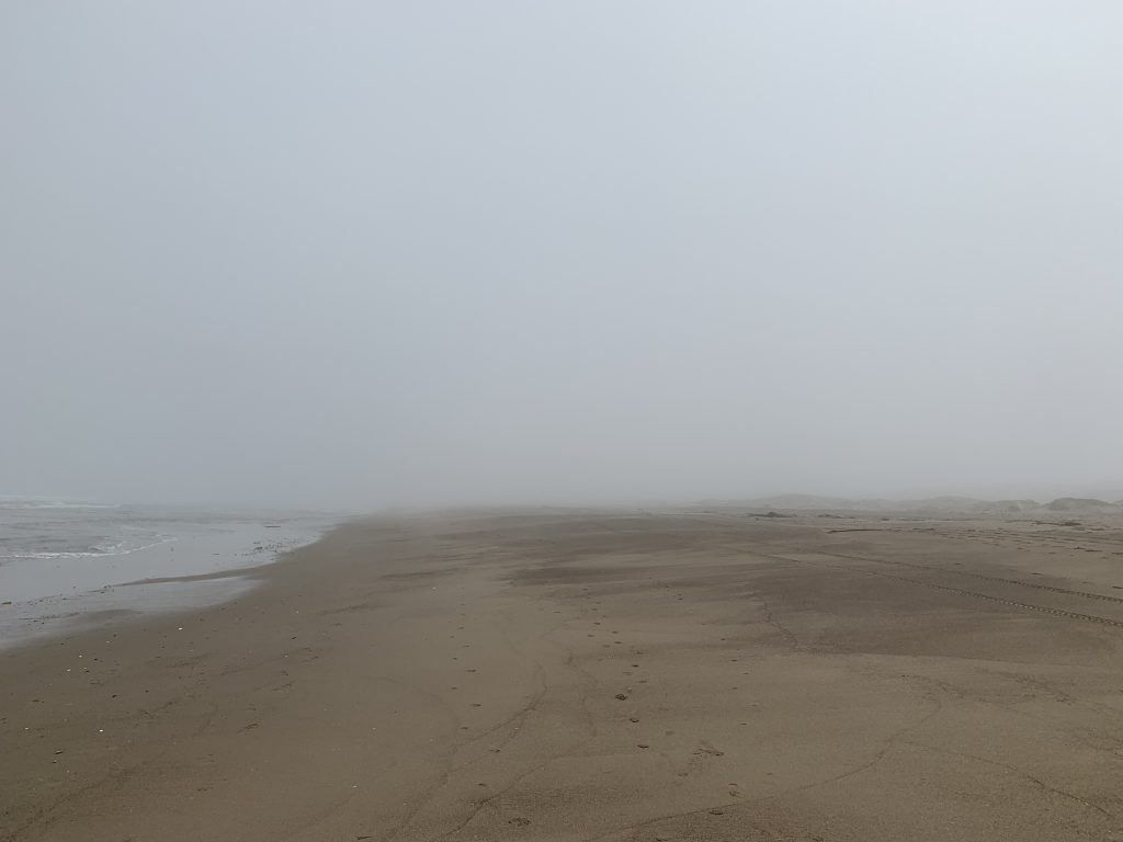 picture of a foggy beach