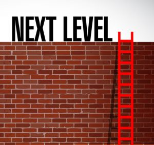 brick wall, red ladder, words Next Level at top