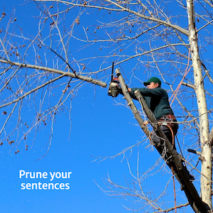 Man pruning branches of tree